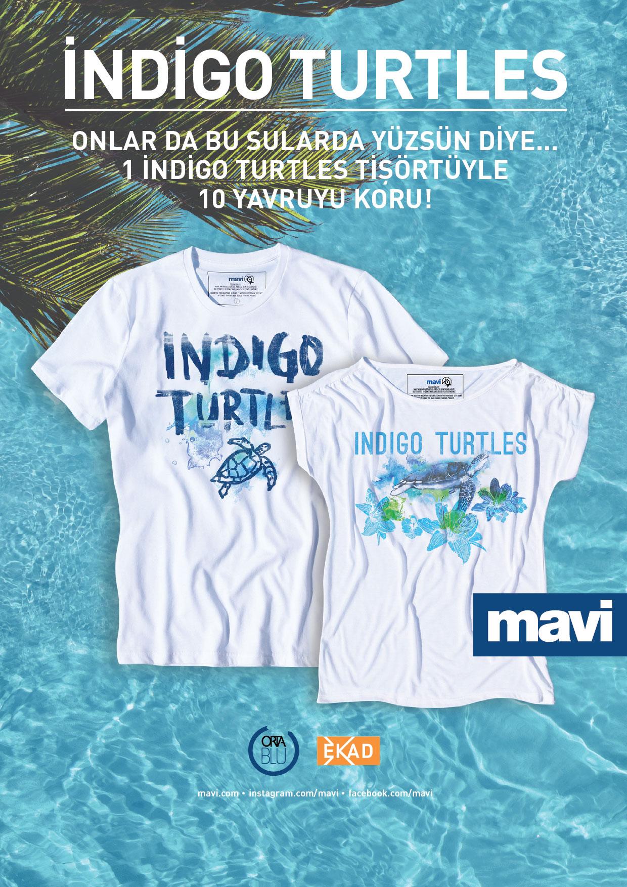 INDIGO TURTLES A4
